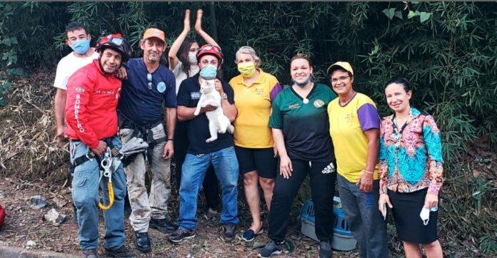 O resgate foi realizado pela equipe da Defesa Civil de Cajamar. Foto: Divulgação/Defesa Civil